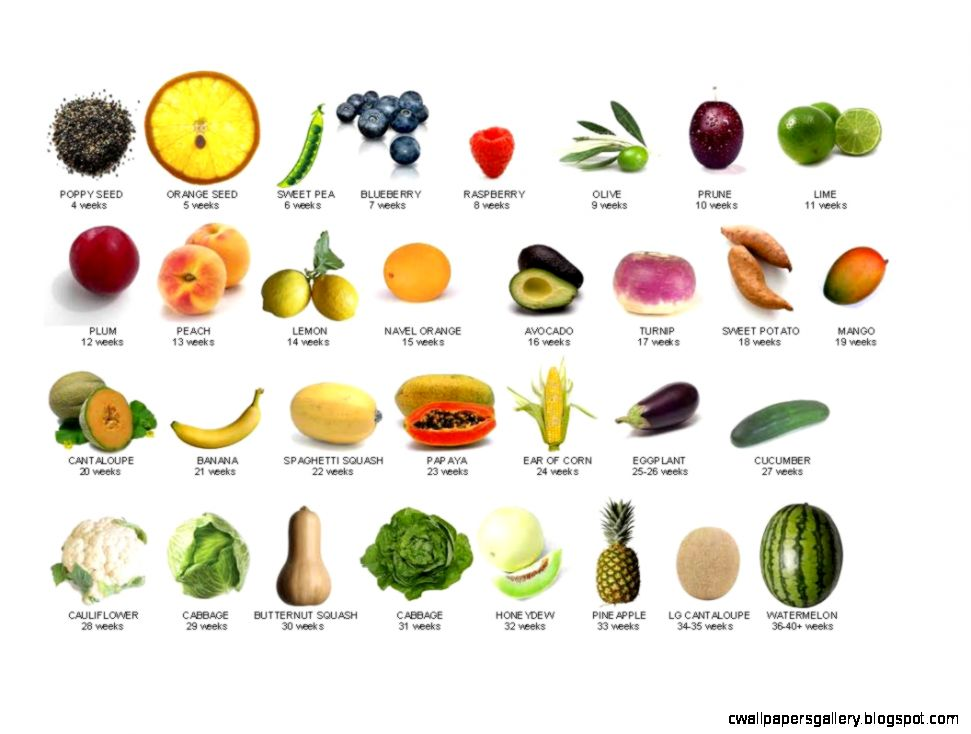 20 Fruits & Vegetables